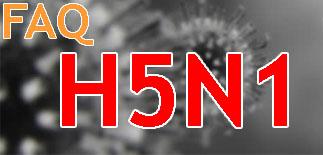 FAQ H5N1